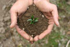 """ARiMR: """"Modernizacja (obszar D)"""" i """"Restrukturyzacja małych gospodarstw"""" do 30 czerwca"""