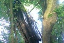 Niebezpieczny wypadek na Jeziorze Wolskim