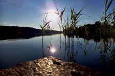 Tymczasowe zaprzestanie działalności połowowej: wnioski o rekompensaty od 24 lipca